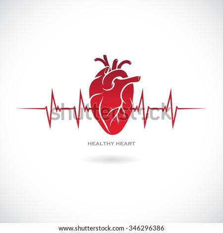 Human heart symbol. Vector illustration.