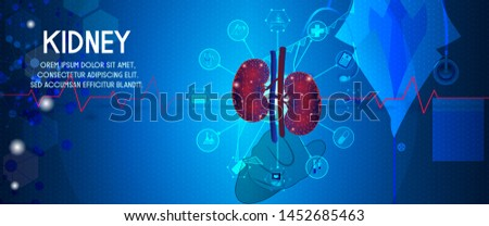 human kidney and treatment