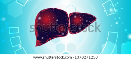 human liver and treatment