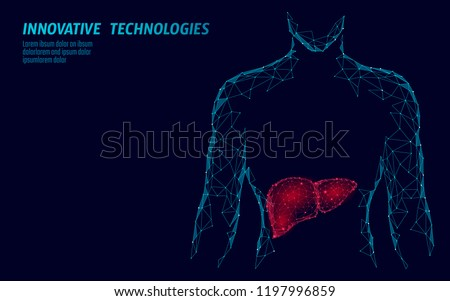 Human Liver hepatitis treatment medicine business concept. Disease prevention health care medical centre doctor online diagnosis low poly 3D render poligonal point line vector illustration