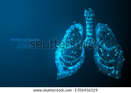 Human lungs and trachea. Organ anatomy. Coronavirus pneumonia, cancer, organ transplant, tuberculosis, asthma. Innovative medical technology. 3d low poly wireframe isolated vector illustration.
