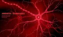 Human neuron low poly anatomy concept. Artificial neural network technology science medicine cloud computing. AI 3D abstract biology system. Polygonal red glowing vector illustration