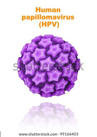 Human papillomavirus (HPV). Vector illustration.