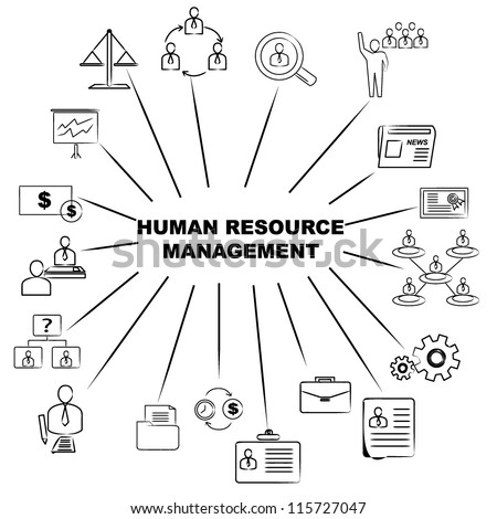 human resource management mind mapping - stock vector