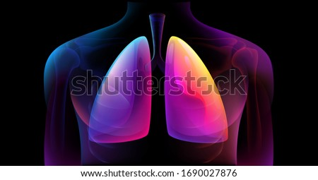 Human Respiratory System Lungs Anatomy. Man silhouette healthy lungs medicine model. Abstract digital blue purple medical illustration isolated on black background. Human Skeleton System Anatomy X-ray