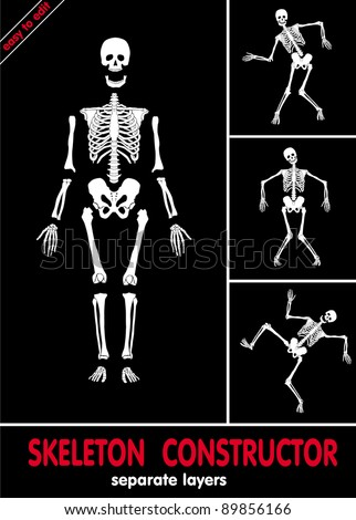 Human skeleton. Bones on separate layers. Easy to edit - stock vector