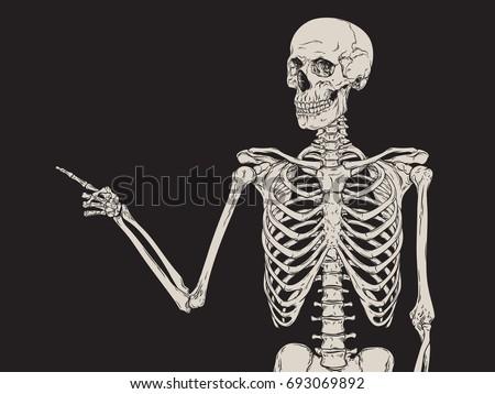 human skeleton finger pointing