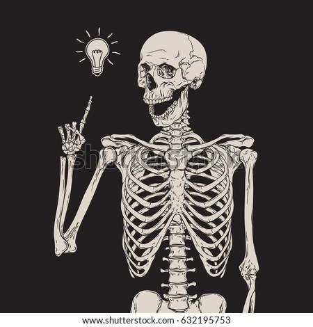 human skeleton has an idea...