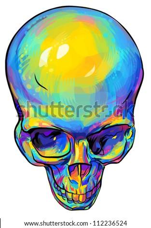 Human skull anatomy - stock vector