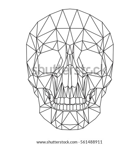 human skull  cranium  abstract