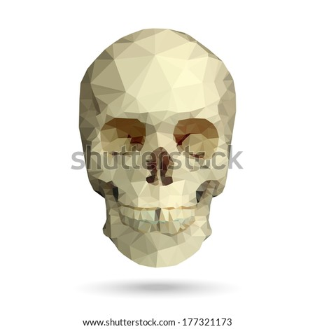 human skull front view made