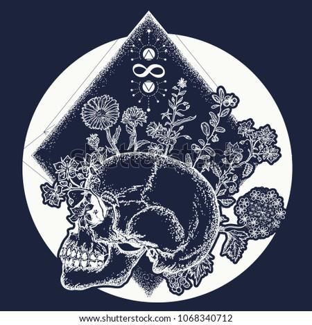 human skull through which