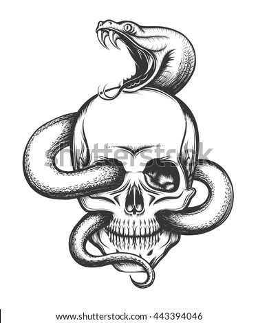human skull with crawling snake