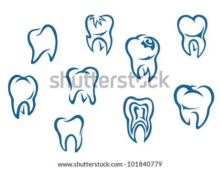 Human teeth set isolated on white background for dental medicine background. Jpeg version also available in gallery