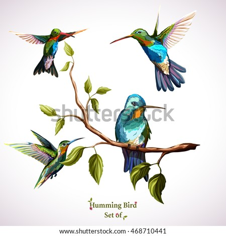 humming birds set of four