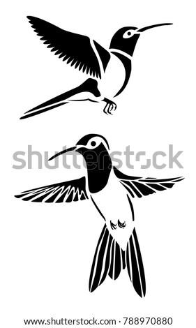 hummingbird animal vector