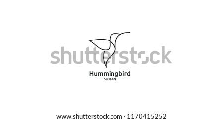 hummingbird line logo icon designs