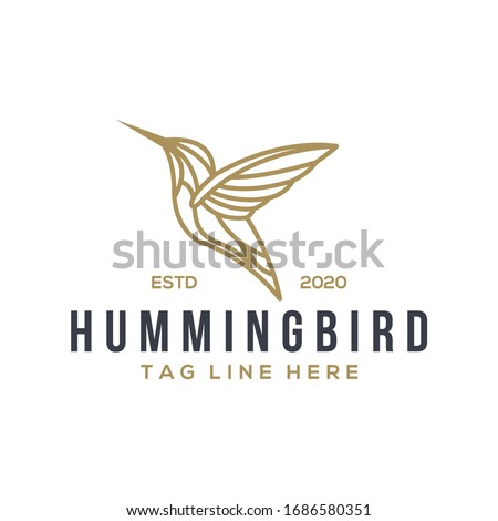 hummingbird logo design vector template Stock photo ©