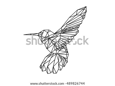 Birds Outlines Graphics Download Free Vector Art Stock Graphics