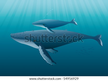 "Humpback Whale mother with young.  ""Full compatible. Created with gradients. Named in layers."""