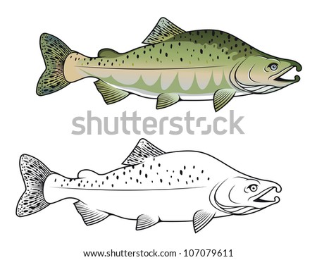 Hunchback salmon fish in color and monochrome versions. Jpeg version also available in gallery