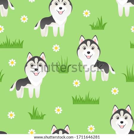 husky cartoon puppy on green