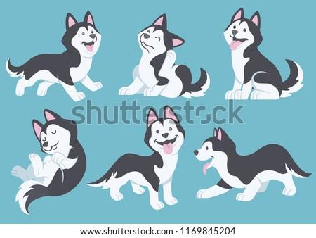 husky dog cartoon set