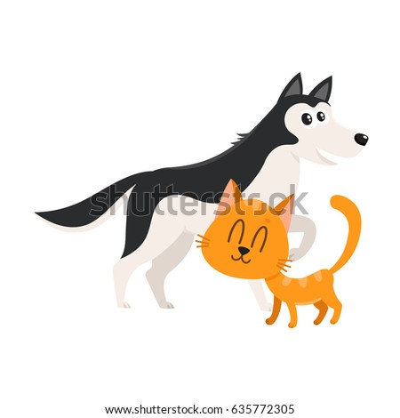 husky dog dog and red cat