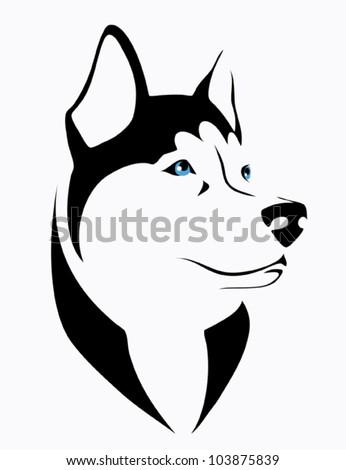 husky dog   vector illustration