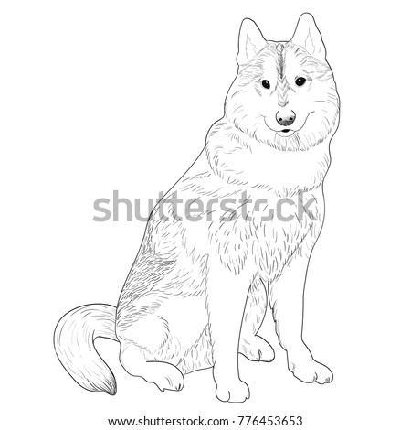 Husky hand drawn sketch. Purebred dog sitting isolated on white background.