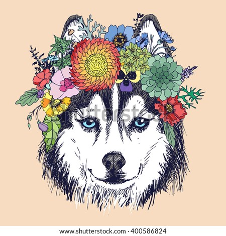 Husky hippie and flowers. Dog portrait in the style of boho. Fashion vector illustration for your blog, logo and other design.