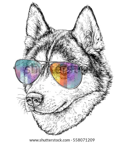 husky hipster hand drawn