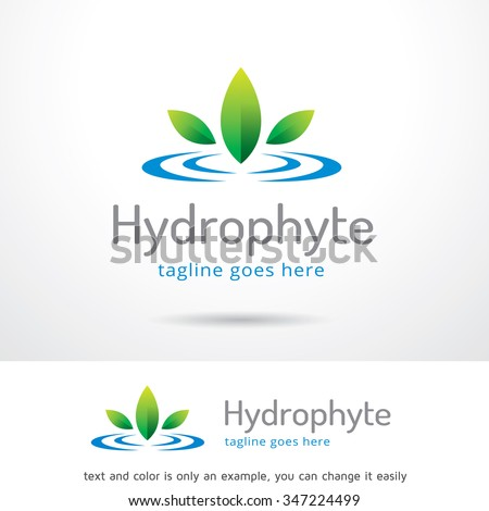 Hydrophyte Logo Template Design Vector