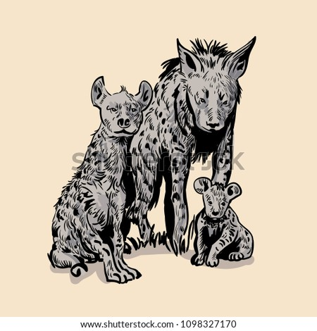 Hyena side view pose. Hand drawn realistic illustrations isolated on background. Vector doodle design.