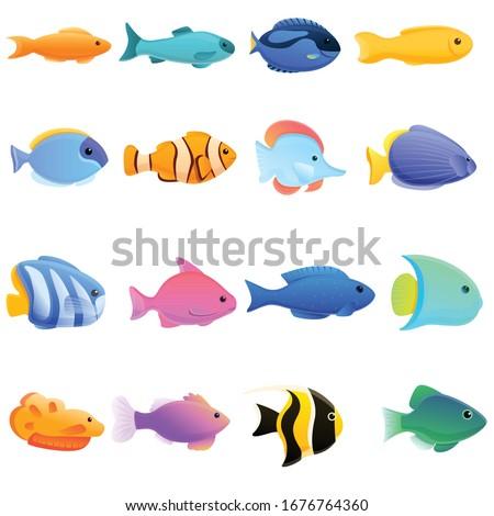 ichthyology icons set cartoon