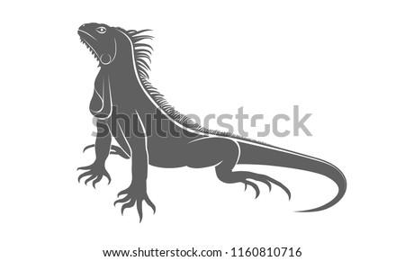 Icon iguana. Flat symbol iguana. Isolated gray sign iguana on white background. Vector Illustration