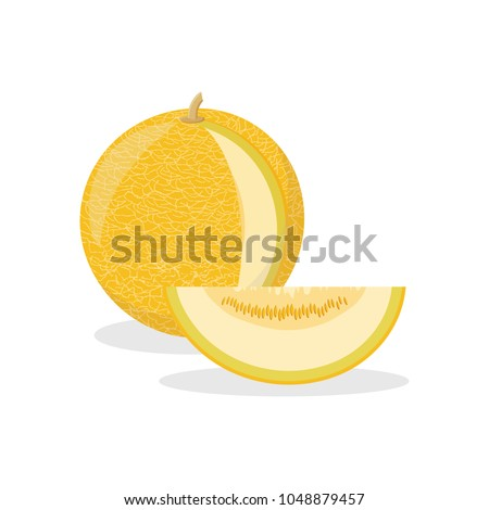 Icon of a ripe yellow melon with a cut piece. Design for a label, banner, poster. Vector illustration.
