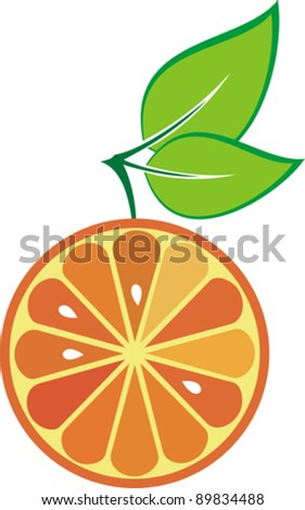 icon orange fruit isolated on White background. Vector illustration