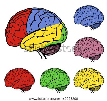 icon set of a brain for web design