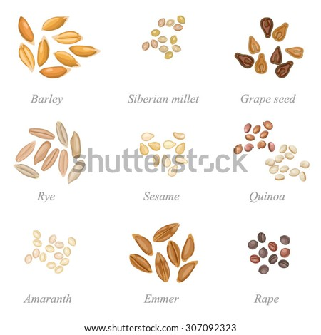 icon set of cereal grains part