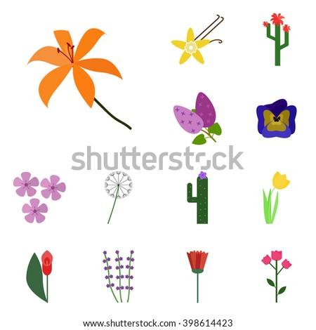 icons flowering  vector lily