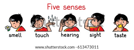 icons of five senses   touch
