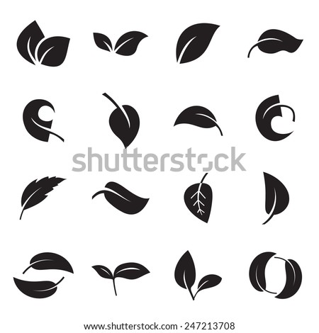 icons of leaves. vector...