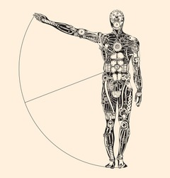 Ideal human proportion that governs the universe. The making of Humans.