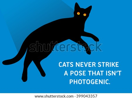 illustrated quote  black cats