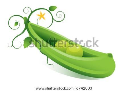 Peas In A Pod. peas in a podquot; concept