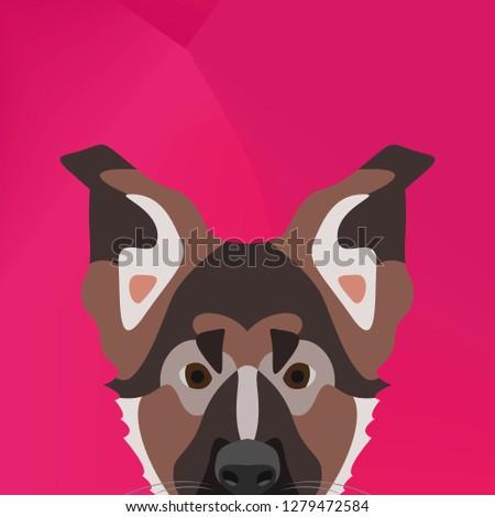 illustration dog german
