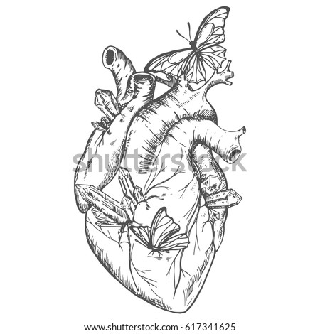 Illustration heart with crystals and butterflies. outline. Vector