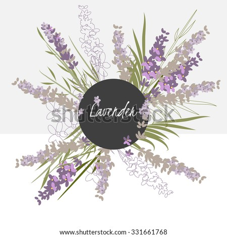 illustration lavender flower