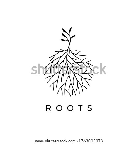 Illustration logo vector graphic of trees and fibrous roots, good for plant logos Stock fotó ©